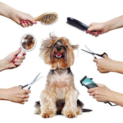 Kozmetika i higijena